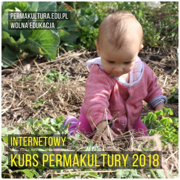 Kurs Permakultury'18 - webinary